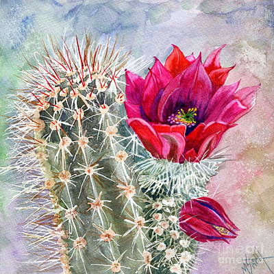 Desert Flower Painting - Hedgehog Cactus by Marilyn Smith