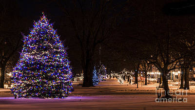 Photograph - Holiday Season In Milford, Connecticut by New England Photography