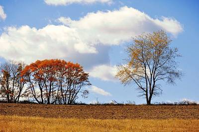 Photograph - Horizon In October by JAMART Photography