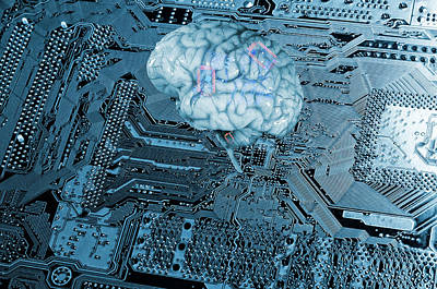 Mother Board Photograph - Human Brain And Communication by Christian Lagereek