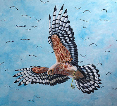 Harrier Painting - Hunter by Paul Parsons