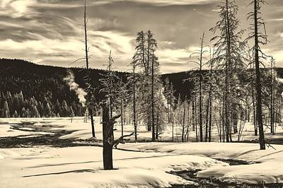 Photograph - Ice Covered Trees In Yellowstone by L O C