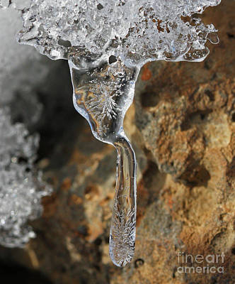 Photograph - Ice by Gary Wing