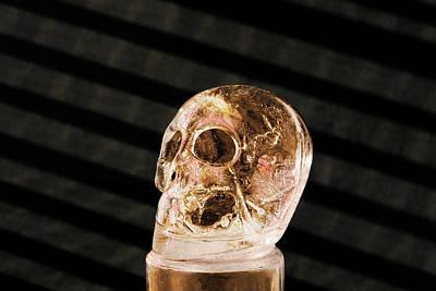 Ice Skull Art Print