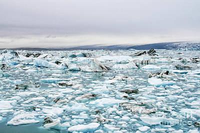 Photograph - Iceberg Lake by Patricia Hofmeester