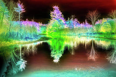 Mixed Media - Infrared Landscape by Lilia D