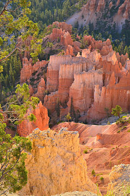 Photograph - Inspiration Hoodoos by Ray Mathis