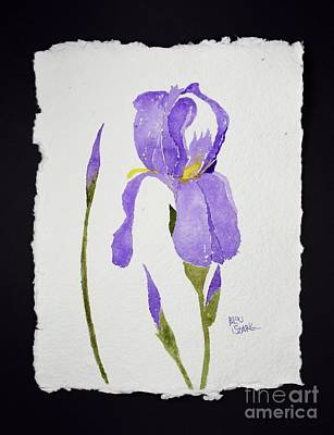 Painting - Iris Love by Barrie Stark