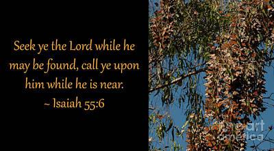 Photograph - Isaiah 55-6 2 by Glenn Franco Simmons