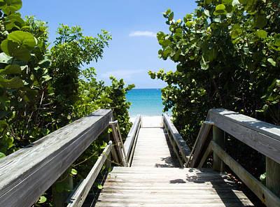 Sean Rights Managed Images - Juno Beach Florida Royalty-Free Image by Allan  Hughes