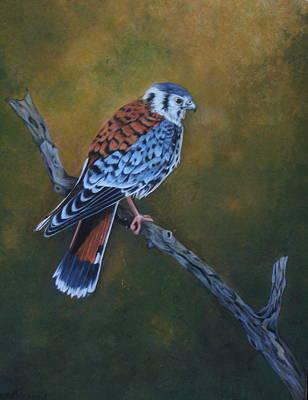 Painting - Kestrel by Joan Barnard