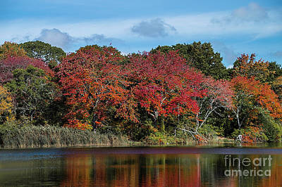 Photograph - Lake Reflections by Judy Hall-Folde