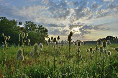 Photograph - Lakewood Forest Preserve Sunrise by Ray Mathis