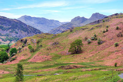 Langdale - Lake District Art Print by Joana Kruse