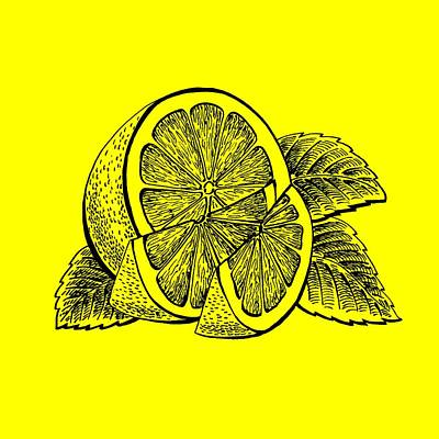 Royalty-Free and Rights-Managed Images - Lemon by Irina Sztukowski