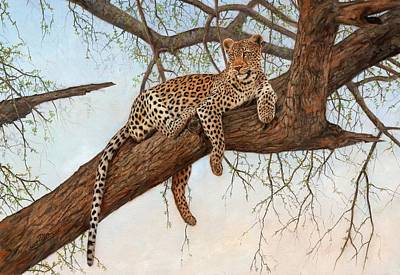 Leopard In Tree Art Print by David Stribbling