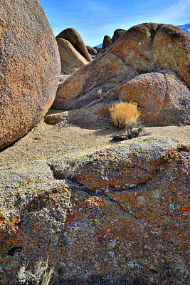 Photograph - Lichen Covered Boulders In The Alabama Hills by Ray Mathis