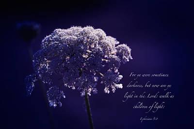 Scripture Photograph - Light by Debbie Nobile