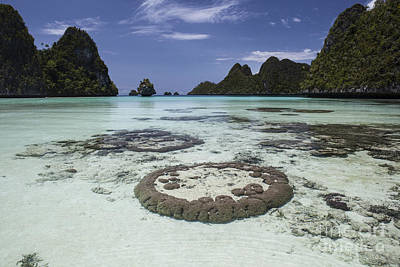 Limestone Islands Surround Corals Art Print by Ethan Daniels