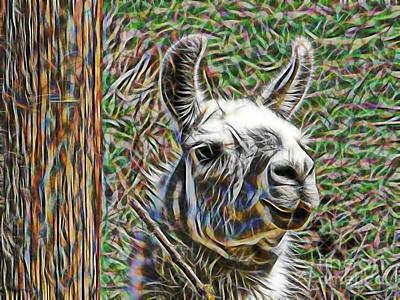 Llama Mixed Media - Llama by Marvin Blaine
