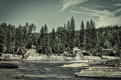 Photograph - Logging In Northern California by L O C