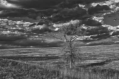 Lonesome Prairie Art Print