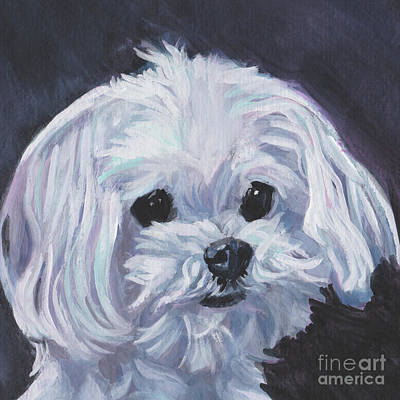 Painting - Maltese by Lee Ann Shepard