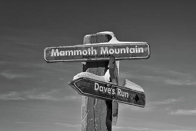 Photograph - Mammoth Mountain And Dave's Run by L O C