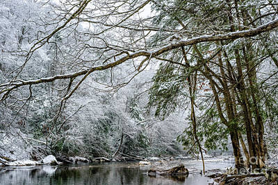 Art Print featuring the photograph March Snow Along Cranberry River by Thomas R Fletcher