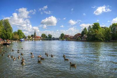Photograph - Marlow by Chris Day