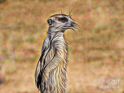 Meerkat Mixed Media - Meerkat by Marvin Blaine