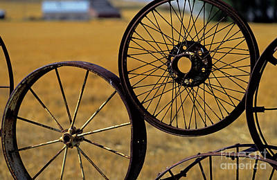 Photograph - Metal Wheel Fence by Jim Corwin