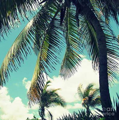 Photograph - Miami by France Laliberte