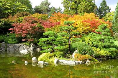 Photograph - Momiji Gardens by Frank Townsley
