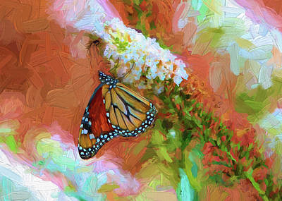 Photograph - Monarch by John Freidenberg