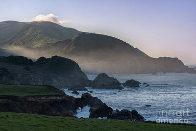 Photograph - Morning Light  by Cathy Alba
