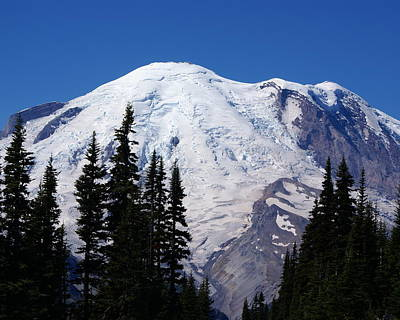 Mount Rainier Art Print by Sonja Anderson