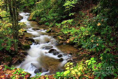 Photograph - Mountain Creek by Jill Lang