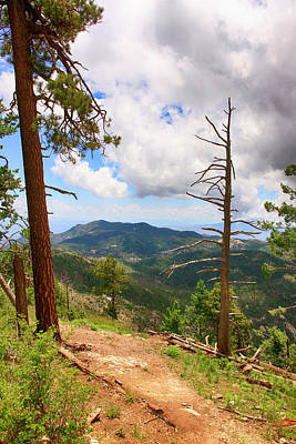 Photograph - Mt Lemmon Trailhead Az by Chris Smith