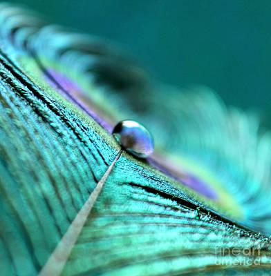 Photograph - Mysterious Ways by Krissy Katsimbras