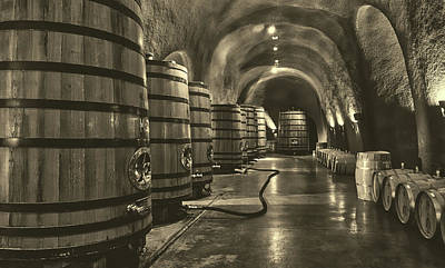 Photograph - Napa Valley Wine Cellar by L O C