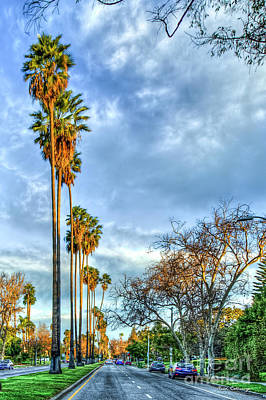 Photograph - Too Tall Palms Hollywood Street Scene Los Angeles California Art by Reid Callaway