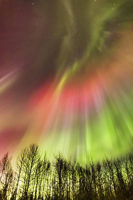 Northern Lights In The Sky Art Print by Kevin Smith