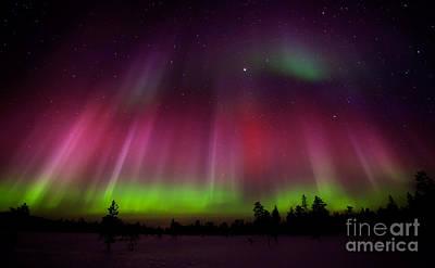 Photograph - Northern Lights by Kati Molin