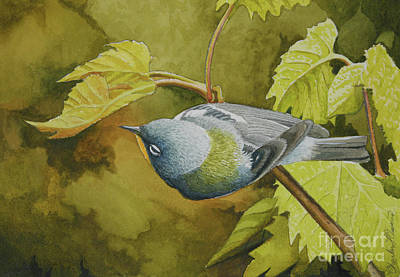 Painting - Northern Parula by Charles Owens