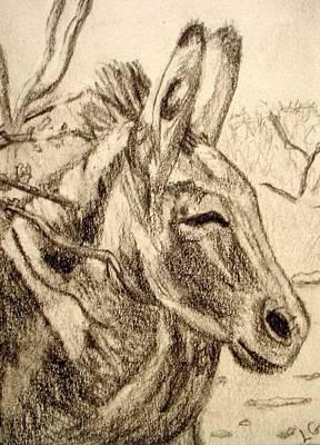 Oatman Burro Art Print by Lessandra Grimley