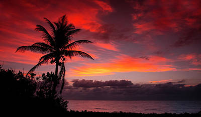 Photograph - Oceanfront Sunrise by Don Durfee