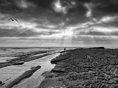 Photograph - Octopus Fishing by Edgar Laureano