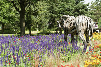 Gatineau Photograph - Odyssey The Horse Sculpture Made Of Driftwood By Heather Jansch. by Bob Corson