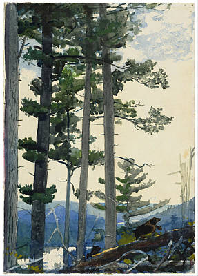 Winslow Homer Painting - Old Settlers by Winslow Homer